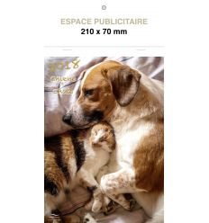 CALENDRIERS ILLUSTRES COMPACTS - CHIENS ET CHATS